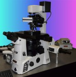 Optical Tweezers System